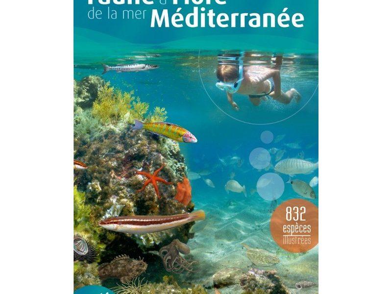 Croisières : De belles villes en Méditerranée ?